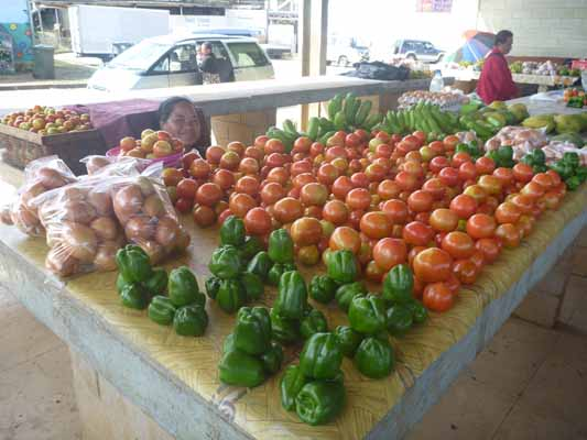 140729ババウ野菜.jpg